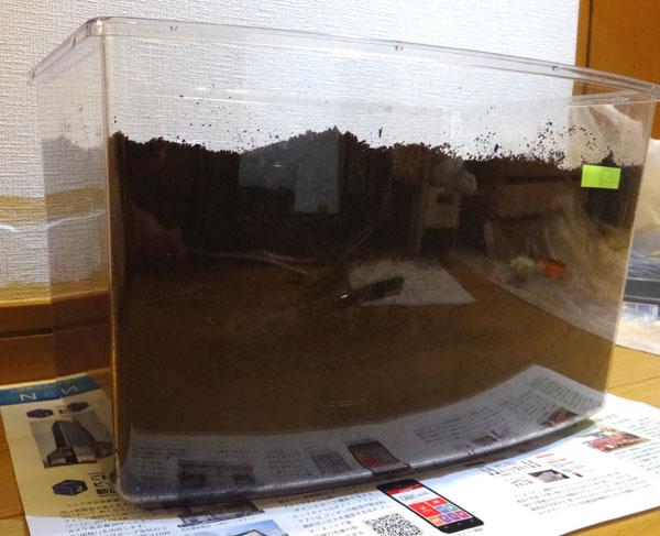 カブトムシの幼虫にとって腐葉土はエサであり、適度に湿度がある腐葉土が多くある方が大きく成長できます。そのため、1ヶ月に1回程度は腐葉土を交換し、水分を加えてよりよい環境を作ってあげましょう。