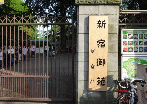 カブトムシを捕まえられる東京都内の公園リスト・詳細案内